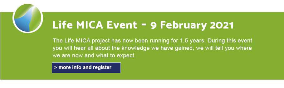 Banner to announce the Life Mica Event of 9 February. click on the image for more info and to sign in